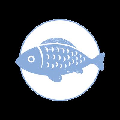 Fisch und Meeresfrüchte Markthalle Kassel